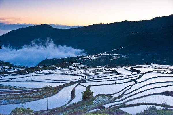 Yunnan - Yuanyang Rice Terraces